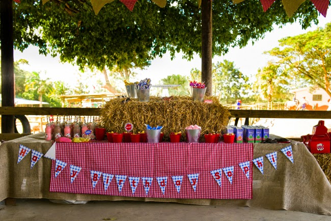 SJ 2nd Birthday – Decor