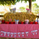 Features: SJ's Farm Party