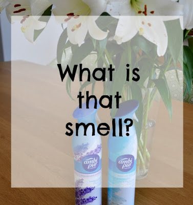 What is that smell?