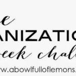 14 Week Organizing Challenge